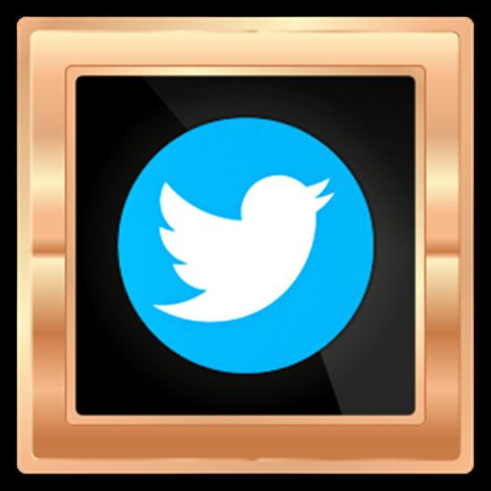 Picture of 1 Ttwitter follower